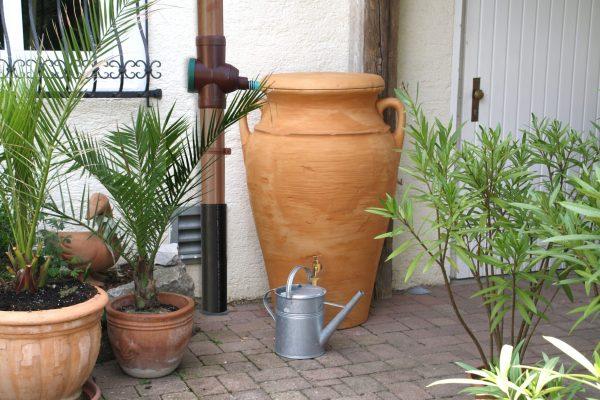 water butt 300 litre helena plant 2