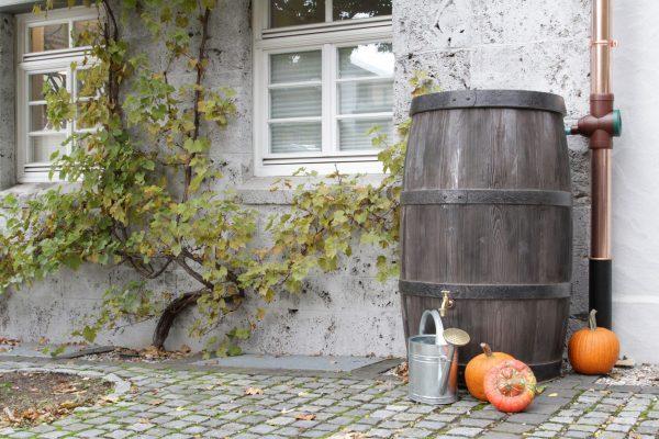 water butt 500 litre burgundy pumpkin
